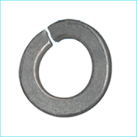 Curve Spring Washer